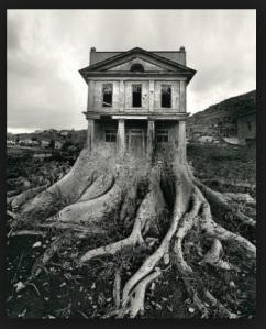 Jerry Uelsmann Tree House