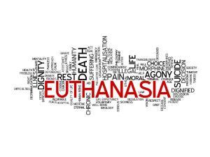 Euthanasia cloud. Image by fotolia.com.