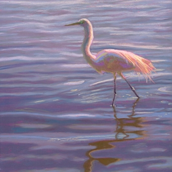 wading_egret_shorebird_pastel_painting_by_poucher_birds__animals__0ab9814573cdaf96543f916ce3622511